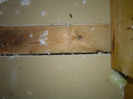 air leakage at the gap between the top plate & drywall