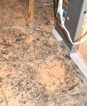 evidence of flooding that could put water inside the new high efficiency HVAC equipment