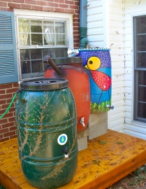 Southern Urban Homestead rain barrel rainwater catchment Allison Adams