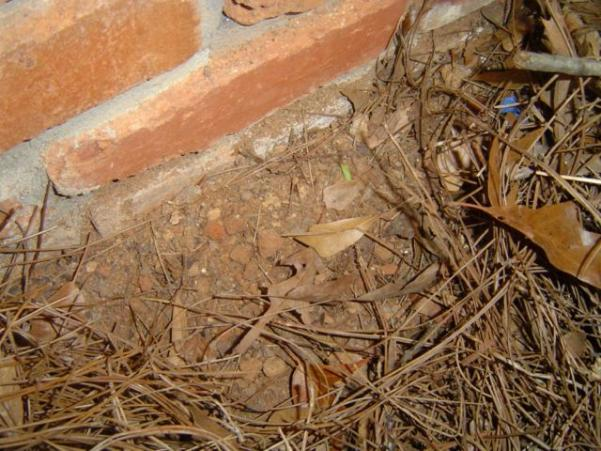 Solving A Crawl Space Water Mystery