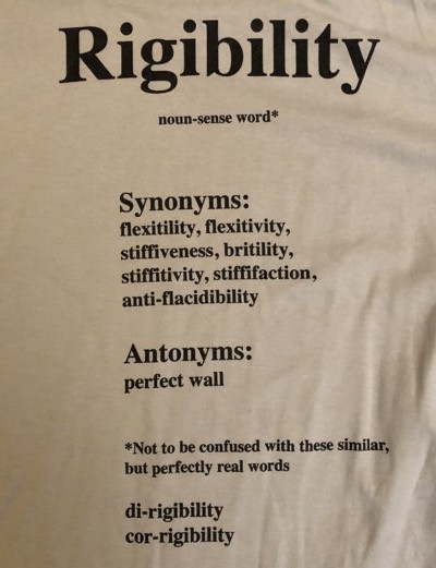 Building Science Summer Camp:  Rigibility t-shirt, back