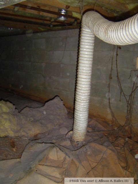 This disconnected dryer vent is dumping heat and moisture into the crawl space.  Some of that heat will find its way into the house and the moisture can aid mold growth.