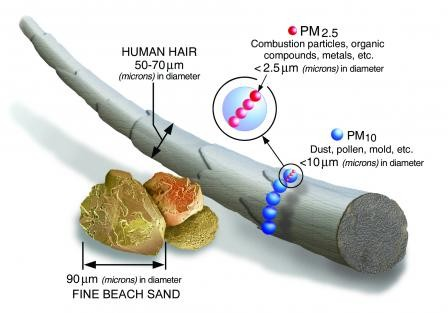 The size of PM2.5  (Image from US Environmental Protection Agency; click to visit page.)