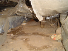 Scary Crawl Space