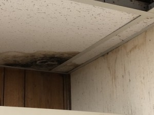 A nasty spot on this ceiling tile in my basement indicates a moisture problem