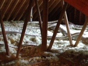 attic bath fan duct snakes 440