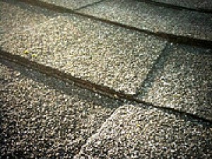 What happens to the temperature of asphalt shingles with an insulated roofline and an unvented attic?