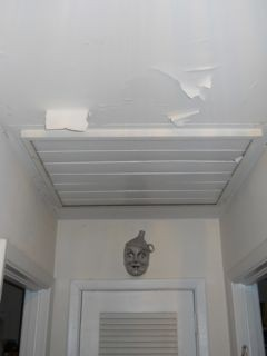 The Paint Was Ling Off Ceiling In This Building Science Mystery House