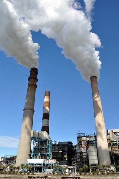 combustion-power-plant-3-pigs.jpg