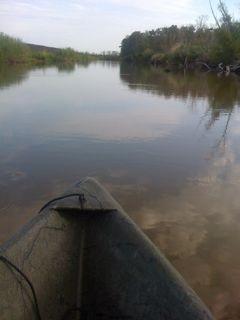 Louisiana bayou cajuns peak oil pirogue